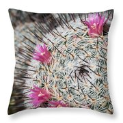 Mammillaria Cactus With Small Flowers Throw Pillow