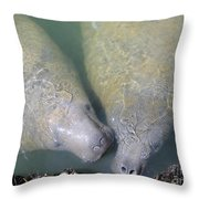 Mammoth Love Throw Pillow