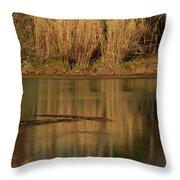 Mammoth Spring Arkansas Throw Pillow