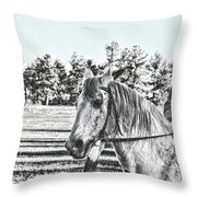 Man And His Horse Throw Pillow