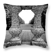 Man Frames Nature Throw Pillow