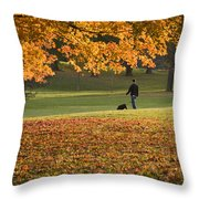 Man In The Park Throw Pillow