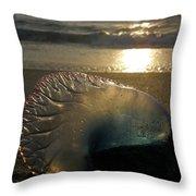Man-o-war In Sunrise Throw Pillow