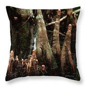 Man Of The Swamp Throw Pillow
