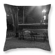 Man Sleeping On Bench Throw Pillow