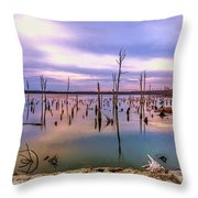 Manasquan Sunrise Throw Pillow