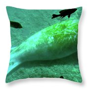 Manatee And Friends Viewed From Glass Bottom Boat At Silver Springs Throw Pillow