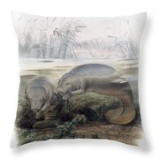 Manatees, Vulnerble Species Throw Pillow