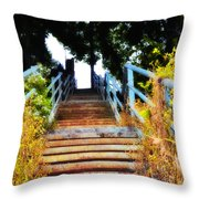 Manayunk Steps Throw Pillow