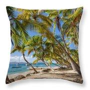Manchioneel Bay, Cooper Island Throw Pillow