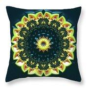 Mandala 467567 Throw Pillow