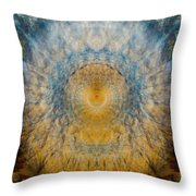 Mandala From The Garden 2 - Flower Feather Shield Throw Pillow