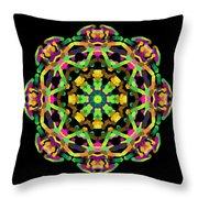 Mandala Image #14 Created On 2.26.2018 Throw Pillow