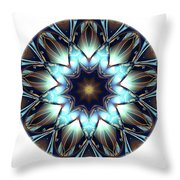 Mandala - Talisman 1446 Throw Pillow