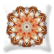 Mandala - Talisman 1620 Throw Pillow