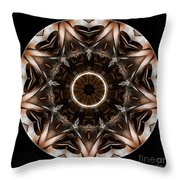 Mandala - Talisman 3706 Throw Pillow
