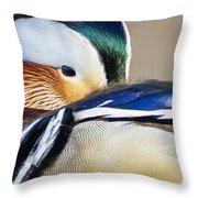 Mandarin Closeup Throw Pillow