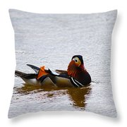 Mandarin Duck 20130507_104 Throw Pillow