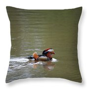 Mandarin Duck 20130507_41 Throw Pillow