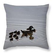 Mandarin Duck And Babes 20130508_227 Throw Pillow