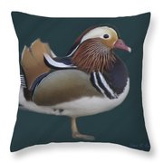 Mandarin Duck II Throw Pillow