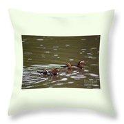 Mandarin Ducks 20130507_96 Throw Pillow