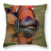 Mandarin Reflection Throw Pillow