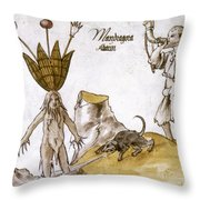 Mandrake And Herbalist Throw Pillow