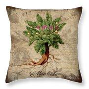 Mandrake Vintage Elements Botanicals Collection Throw Pillow
