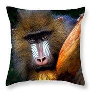 Mandrill Portrait Throw Pillow