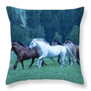 Mane's Aflying Throw Pillow