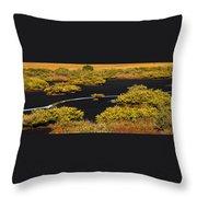Mangrove River Panoramic Throw Pillow