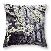 Manhattan Spring Throw Pillow