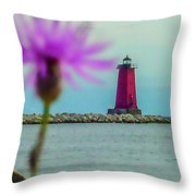 Manistique Throw Pillow