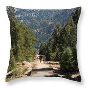Manitou Springs Pikes Peak Incline Throw Pillow