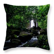 Manoa Falls Stream Throw Pillow
