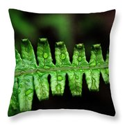 Manoa Fern Throw Pillow