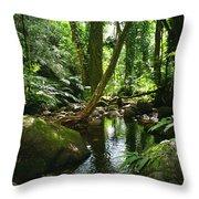 Manoa Valley Stream Throw Pillow
