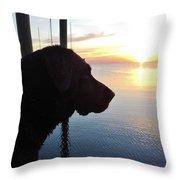 Mans Best Friend Sunset 3 411 Throw Pillow
