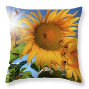 Many Bees Flying Around Sunflowers Throw Pillow