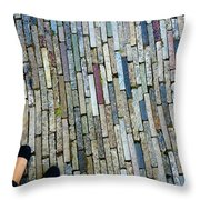 Many Layered Path Throw Pillow