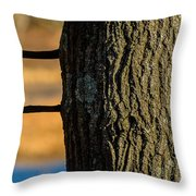 The Many Lines Of Nature Throw Pillow