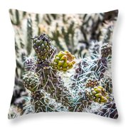 Many Stems Of Poky Small Cactus In Desert Throw Pillow