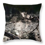 Many Webs Throw Pillow