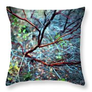 Manzanita Abstract Throw Pillow