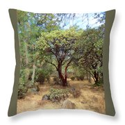 Manzanita And Pine Trees At Meadow Edge Throw Pillow