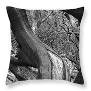 Manzanita Black And White Throw Pillow