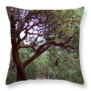 Manzanita Tree By The Road Throw Pillow