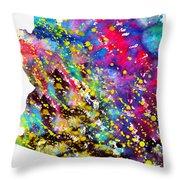Map Of Arizona-colorful Throw Pillow