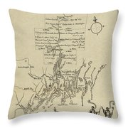 Map Of Plymouth Throw Pillow